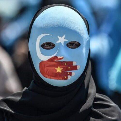 Oeigoerendocu